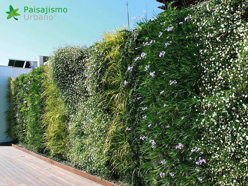 img-jardin-vertical-atico-murcia-10