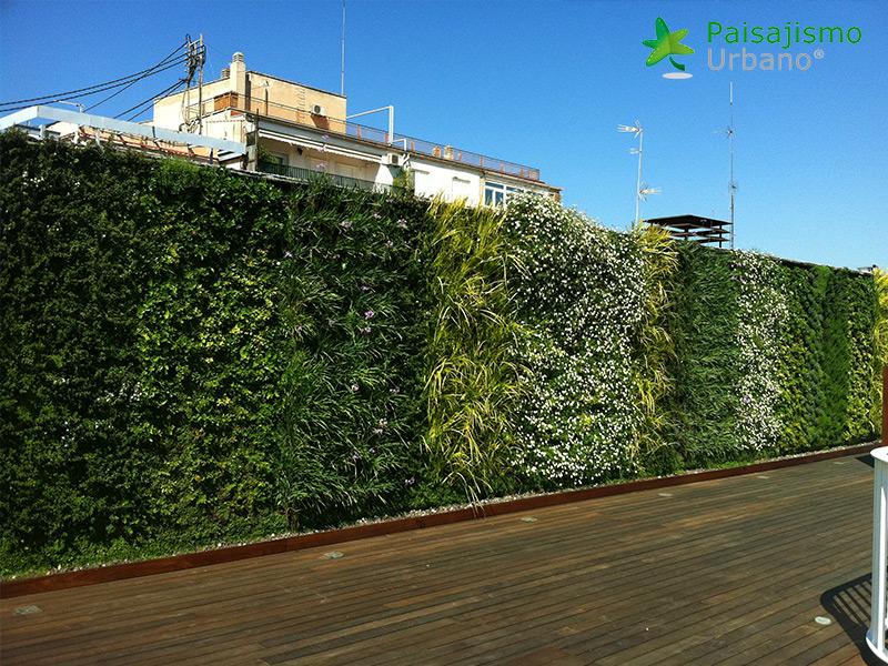 img-jardin-vertical-atico-murcia-12