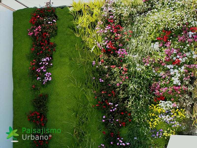 img-jardin-vertical-atico-murcia-20