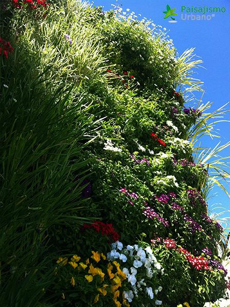img-jardin-vertical-atico-murcia-23