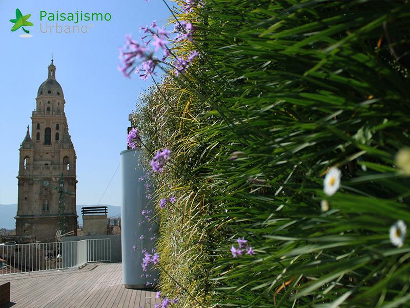 img-jardin-vertical-atico-murcia-24
