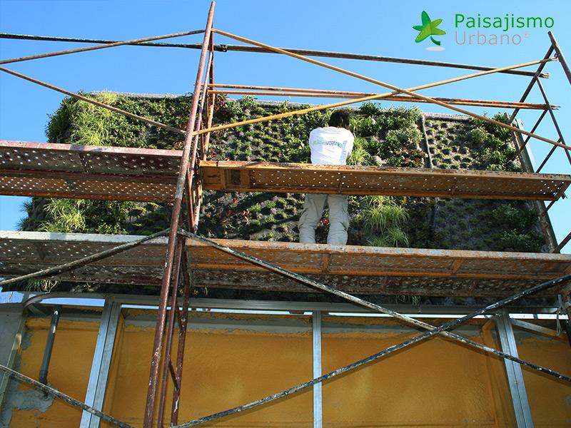 img-jardin-vertical-atico-murcia-5