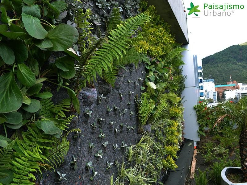 img-jardin-vertical-biomax-bogota-colombia-5