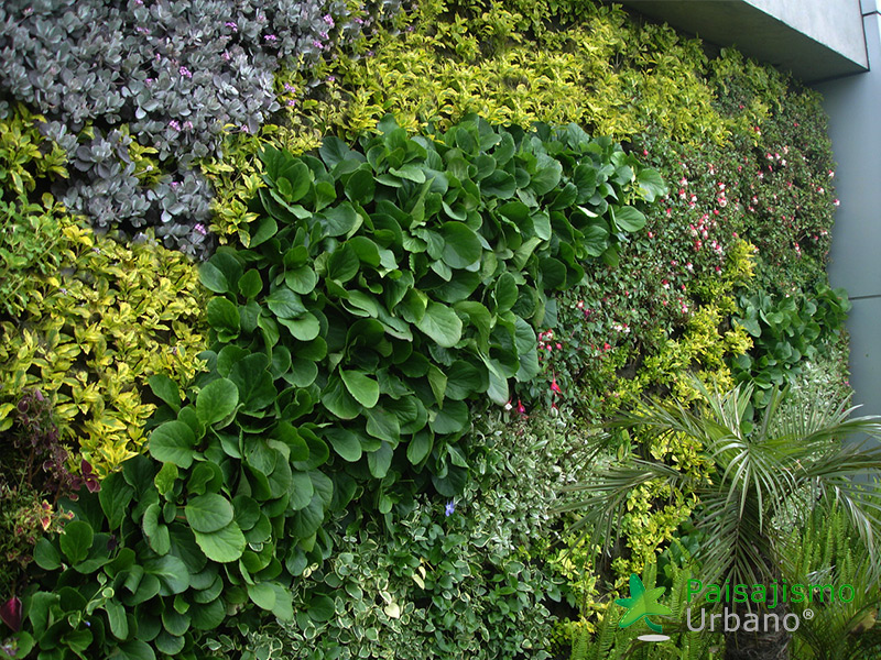 img-jardin-vertical-biomax-bogota-colombia-6