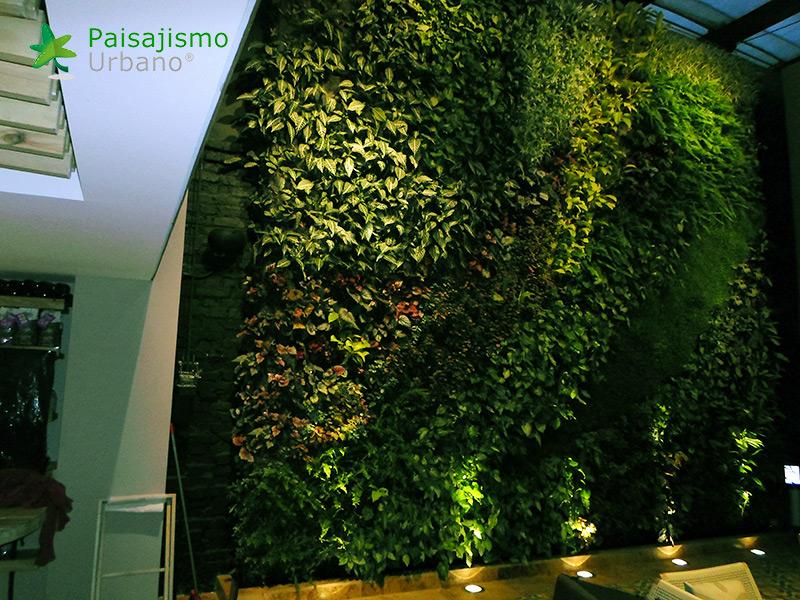 img-jardin-vertical-cafeteria-jan-valdez-bogota-colombia-5