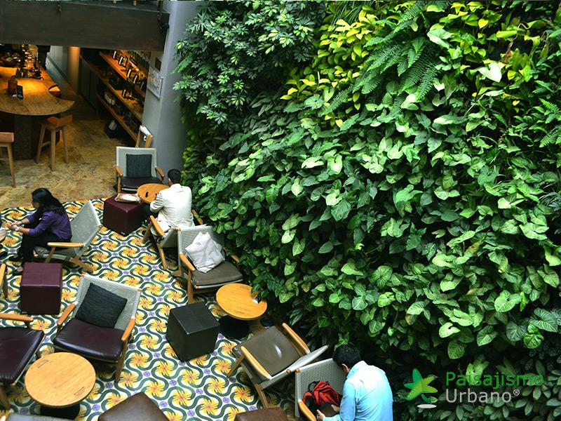 img-jardin-vertical-cafeteria-jan-valdez-bogota-colombia-7