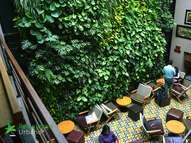 img-jardin-vertical-cafeteria-jan-valdez-bogota-colombia-8