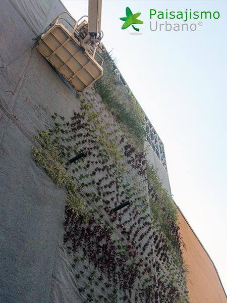 img-jardin-vertical-centro-comercial-las-brisas-bolivia-10