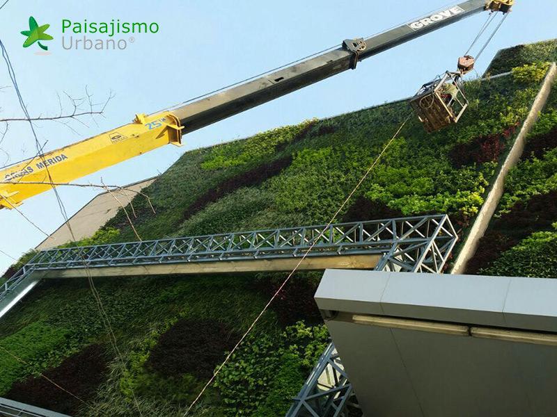 img-jardin-vertical-centro-comercial-las-brisas-bolivia-12