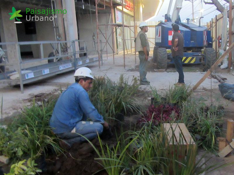 img-jardin-vertical-centro-comercial-las-brisas-bolivia-6