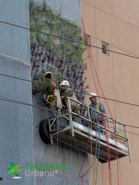 img-jardin-vertical-centro-comercial-las-brisas-bolivia-7