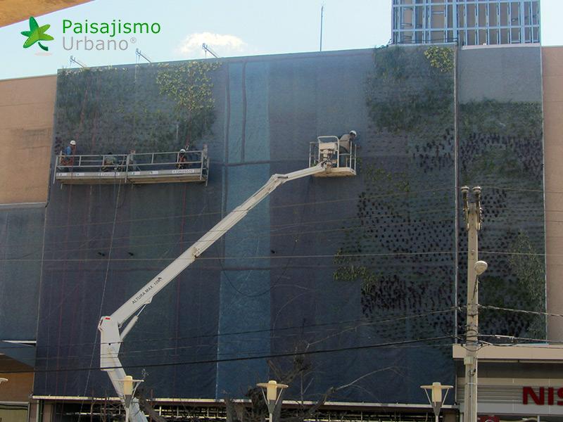 img-jardin-vertical-centro-comercial-las-brisas-bolivia-9
