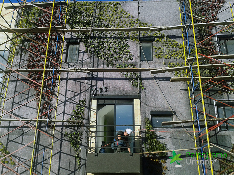 img-jardin-vertical-ecohouse-colombia-8