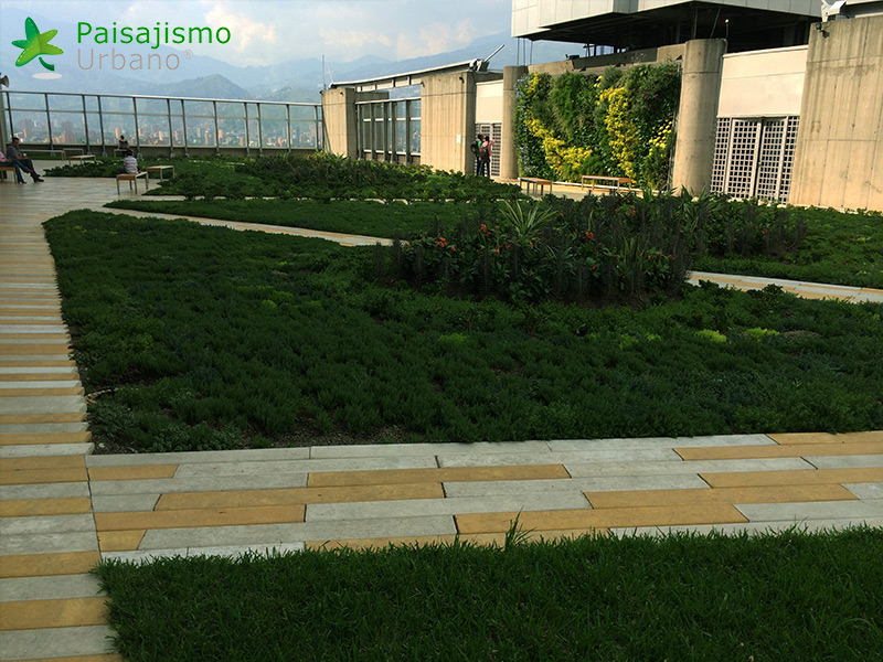 img-jardin-vertical-edificio-inteligente-epm-medellin-colombia-12
