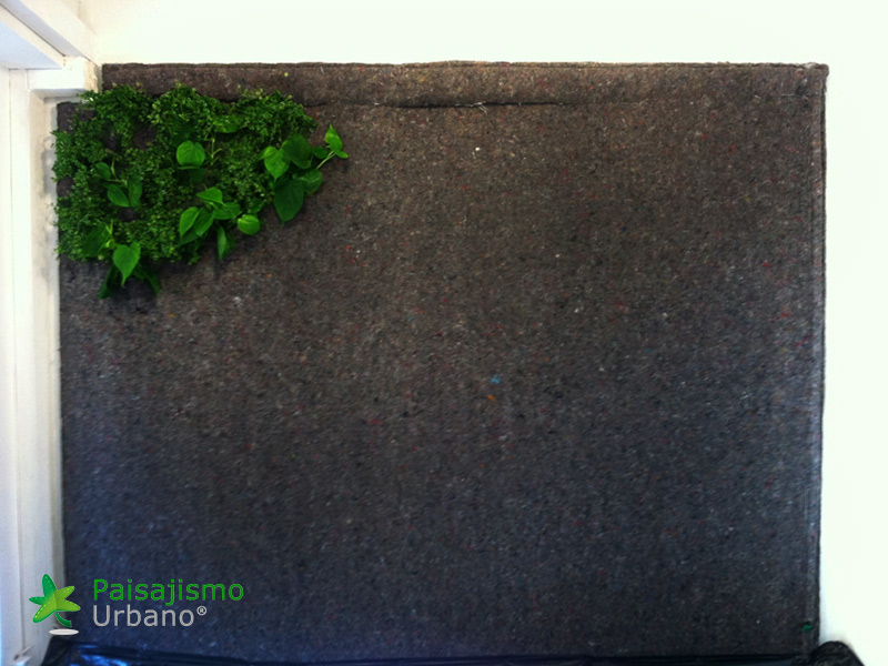 img-jardin-vertical-estudio-pilates-alicante-1