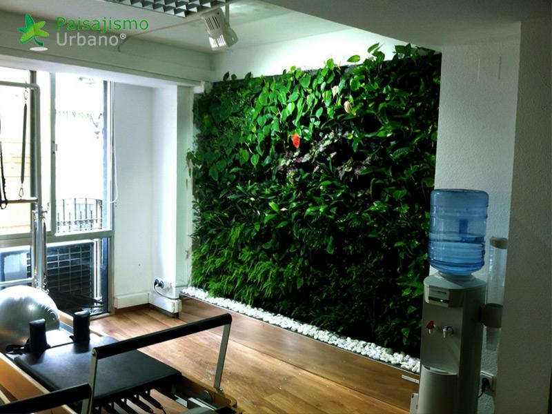 img-jardin-vertical-estudio-pilates-alicante-10