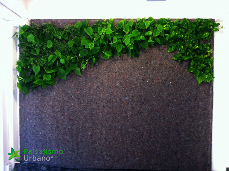 img-jardin-vertical-estudio-pilates-alicante-3