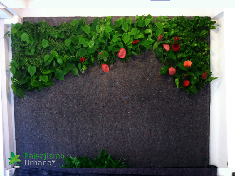 img-jardin-vertical-estudio-pilates-alicante-4