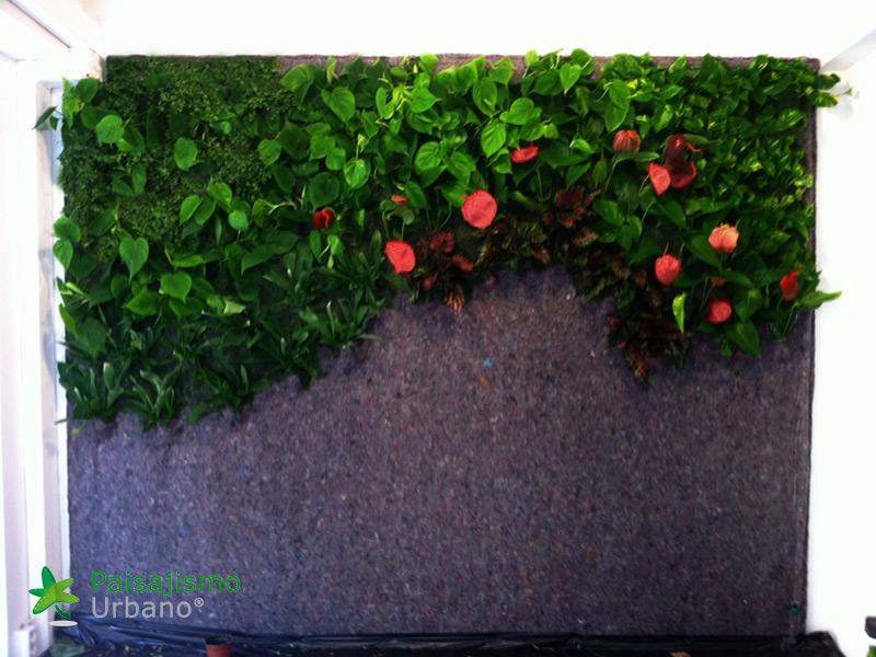 img-jardin-vertical-estudio-pilates-alicante-5