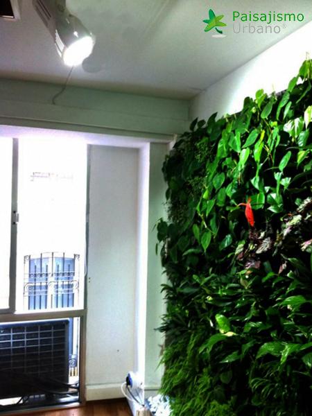 img-jardin-vertical-estudio-pilates-alicante-9
