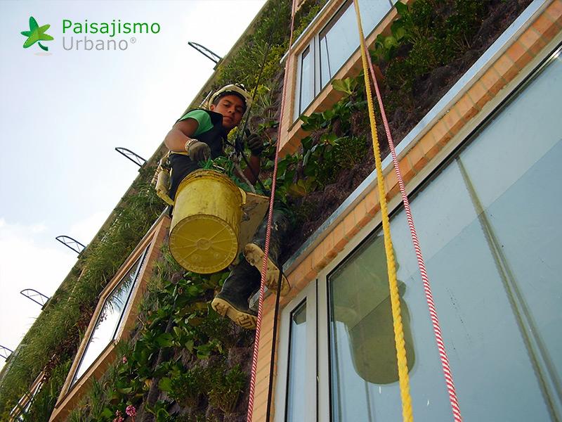 img-jardin-vertical-hotel-gaia-b3-bogota-10