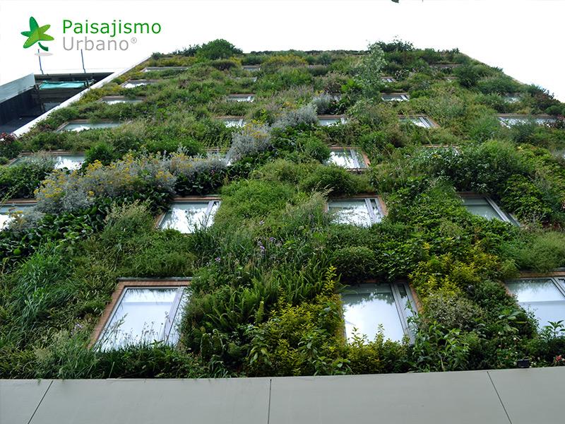 img-jardin-vertical-hotel-gaia-b3-bogota-13