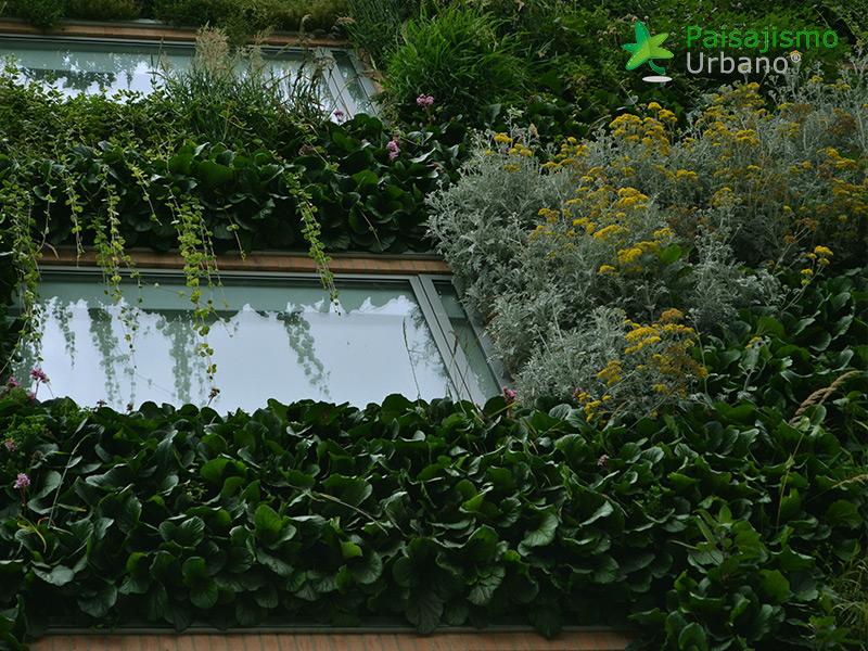 img-jardin-vertical-hotel-gaia-b3-bogota-14