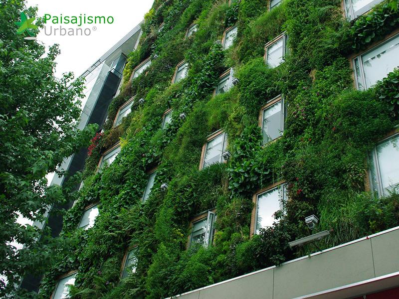 img-jardin-vertical-hotel-gaia-b3-bogota-15