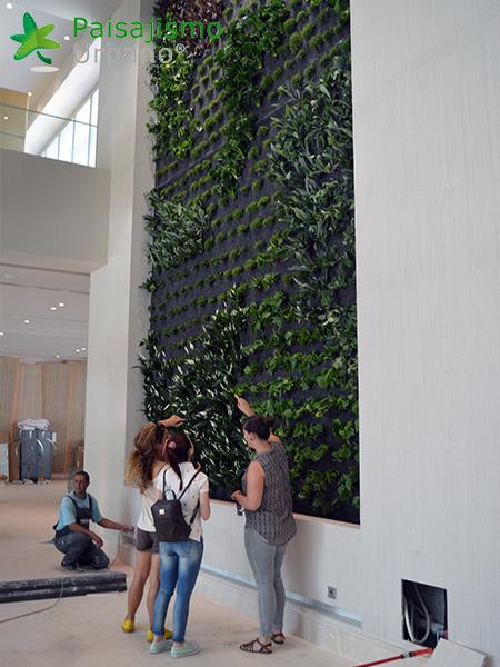 img-jardin-vertical-hotel-sani-dunes-grecia-14