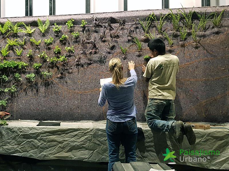 img-jardin-vertical-interior-guatemala-centro-empresarial-9_1