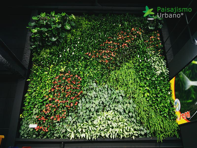 img-jardin-vertical-maskokotas-valencia-12