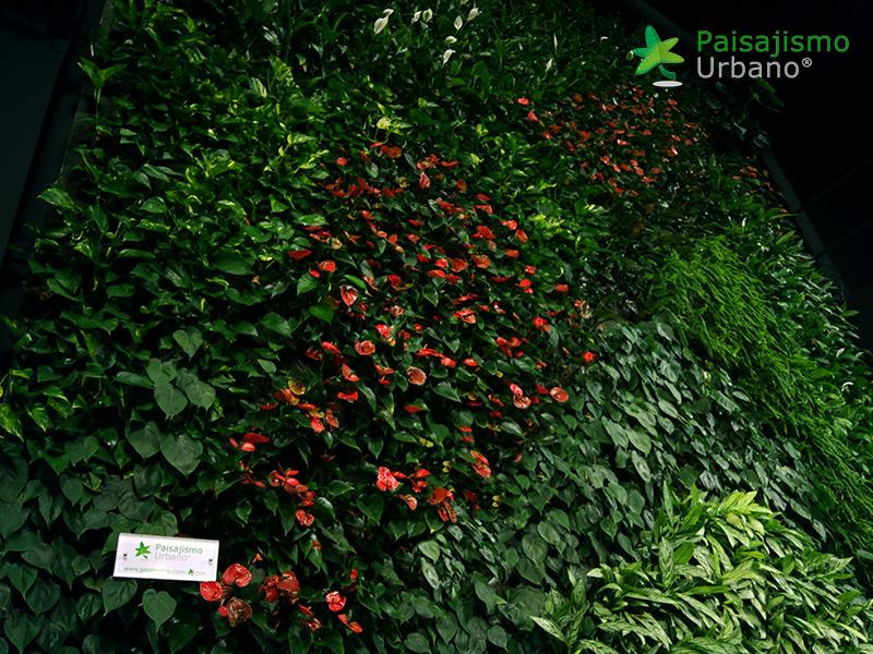 img-jardin-vertical-maskokotas-valencia-13