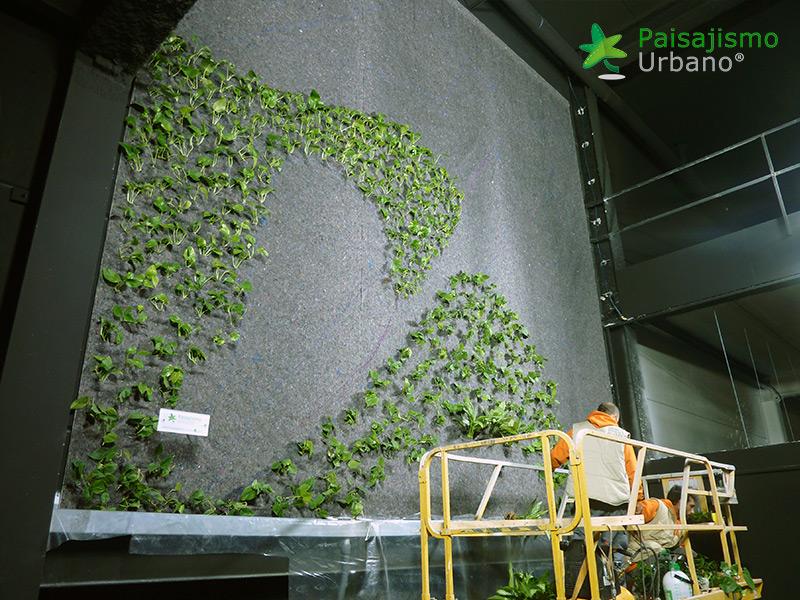 img-jardin-vertical-maskokotas-valencia-6