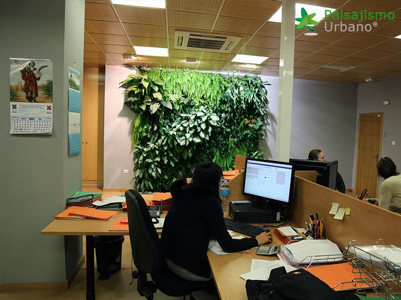 img-jardin-vertical-oficinas-alicante-6