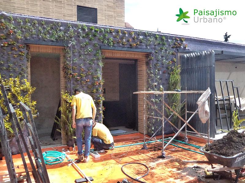 img-jardin-vertical-residencia-privada-bogota-colombia-5