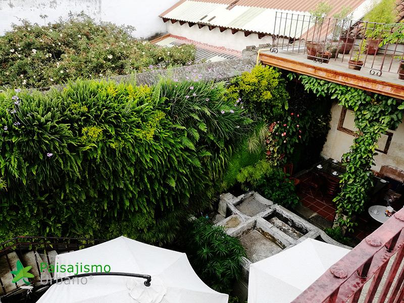 img-jardin-vertical-restaurante-antigua-guatemala-18