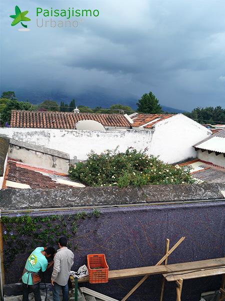 img-jardin-vertical-restaurante-antigua-guatemala-5