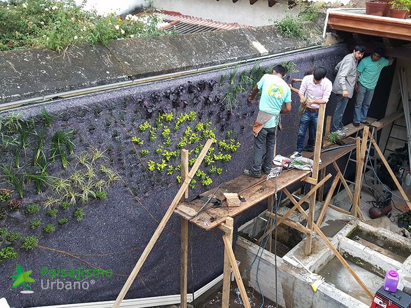 img-jardin-vertical-restaurante-antigua-guatemala-9