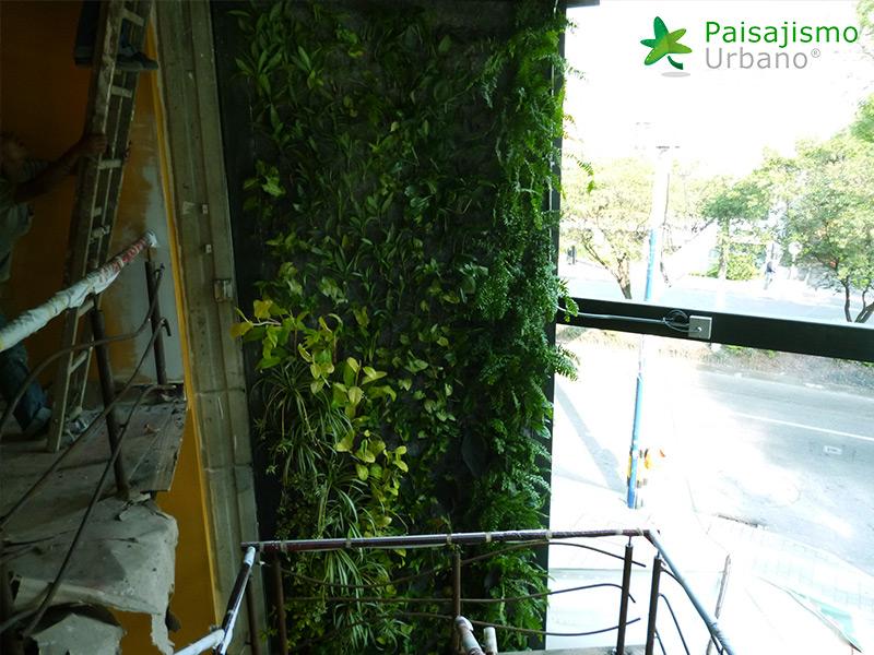 img-jardin-vertical-restaurante-j-c-delicias-medellin-colombia-10