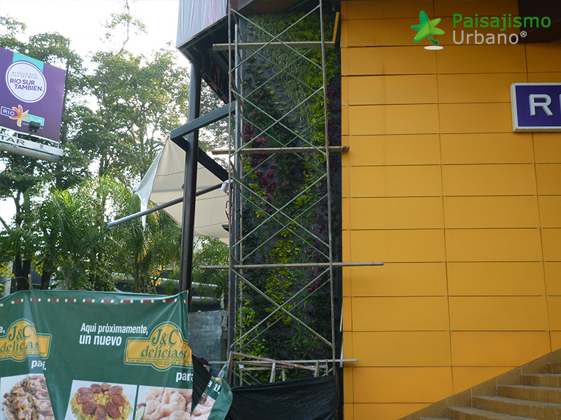 img-jardin-vertical-restaurante-j-c-delicias-medellin-colombia-4