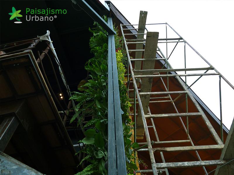 img-jardin-vertical-restaurante-j-c-delicias-medellin-colombia-6