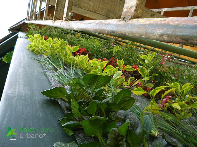 img-jardin-vertical-restaurante-j-c-delicias-medellin-colombia-7
