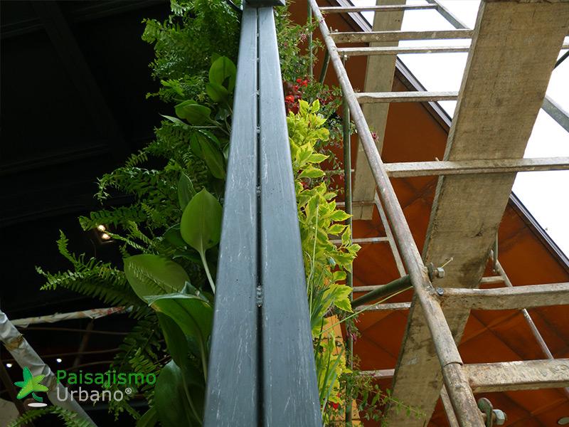 img-jardin-vertical-restaurante-j-c-delicias-medellin-colombia-8
