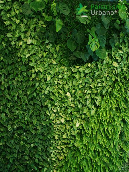 img-jardin-vertical-villa-lujo-ibiza-13