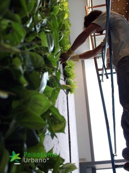 img-jardin-vertical-villa-lujo-ibiza-5