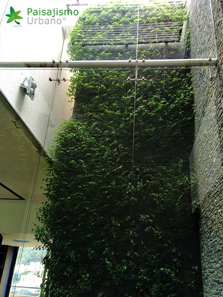 img-jardines-verticales-alameda-colombia-5