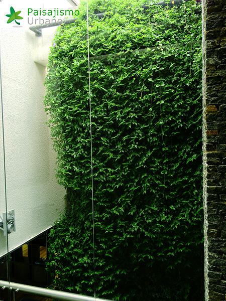 img-jardines-verticales-alameda-colombia-6