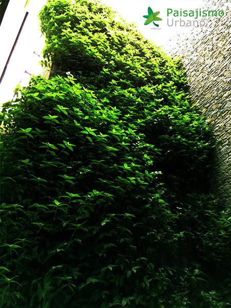 img-jardines-verticales-alameda-colombia-7