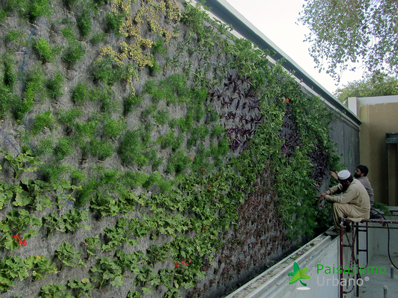 img-jardines-verticales-arabia-residencia-privada-11