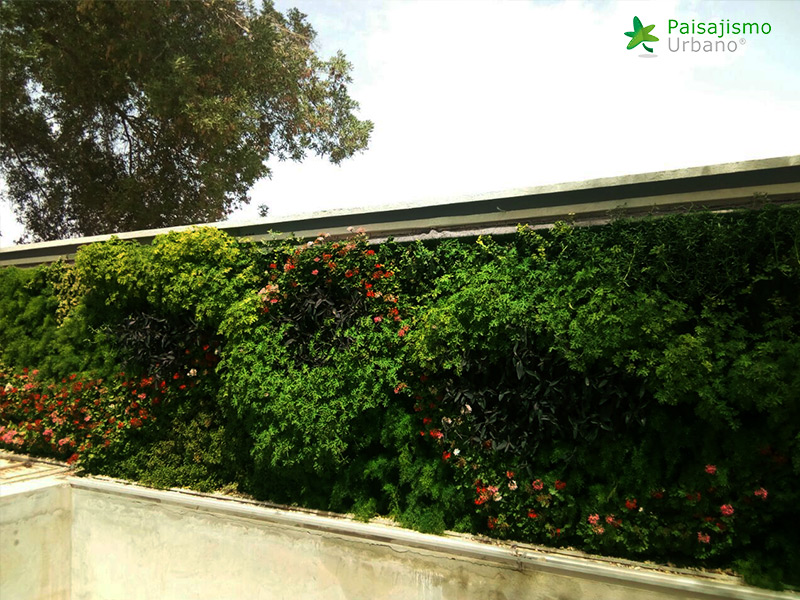 img-jardines-verticales-arabia-residencia-privada-17